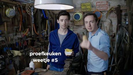 Proefkeuken Weetje #5: De friet-aardappel