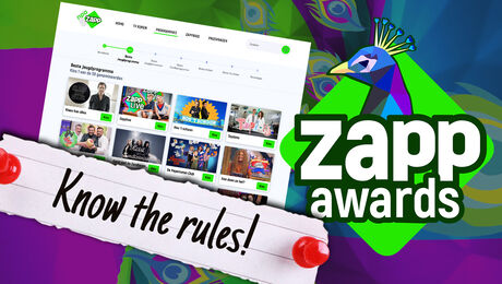 Zapp Awards 2020 | Stemreglement