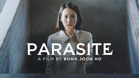 OSCAR BESTE FILM NAAR NIET-ENGELSTALIGE FILM
