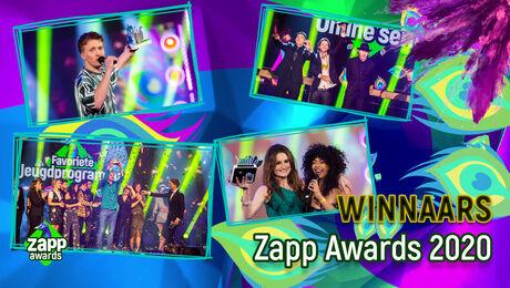 Dit zijn de winnaars van de Zapp Awards 2020!