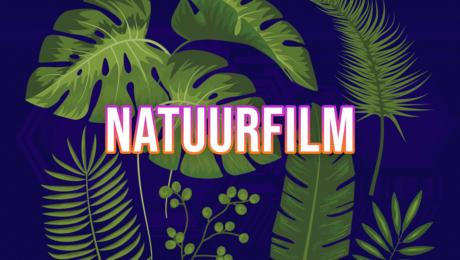 Maak je eigen natuurfilm!