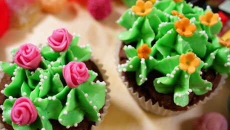 Niks Meer Aan Doen! Cactuscakes