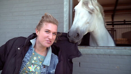 Paardrijden, Tim Lips