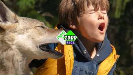 De beste kinderfilms met en over dieren zijn gratis te zien in Zappbios.