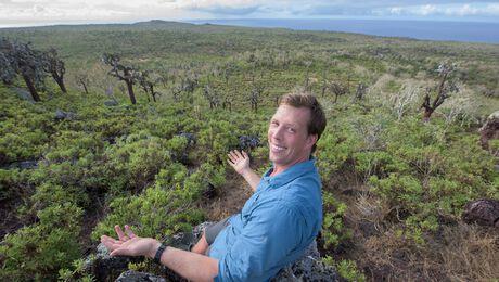 Freeks wilde wereld: Overleven op de savanne