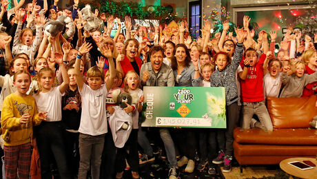 Zapp Your Planet: SOS Koala | DE FINALE